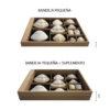 Suplemento bandeja pequeña guardar colección conchas numismática